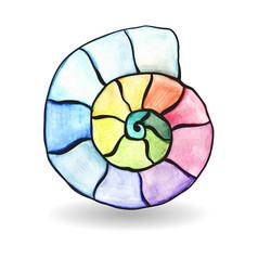 watercolor shell vector image