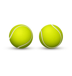 yellow tennis ball closeup on a white background vector image