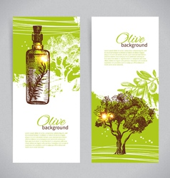 Banner set of vintage olive background vector image