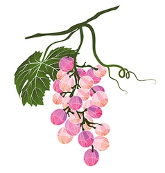 Bunch of pink grapes stylized polygonal vector image