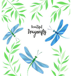dragonflies in flight vector image