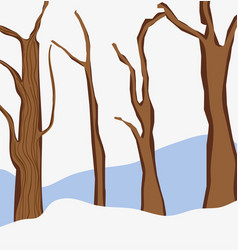 dry trees on winter vector image
