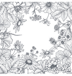Floral frame with hand drawn wildflowers and vector