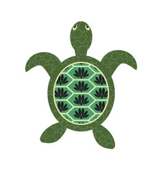Turtle cartoon with decorated tortoiseshell vector