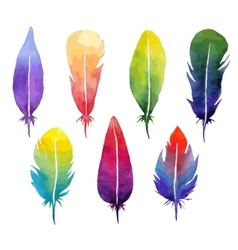 Watercolor feather set vector