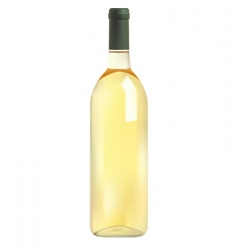 white wine bottle vector image