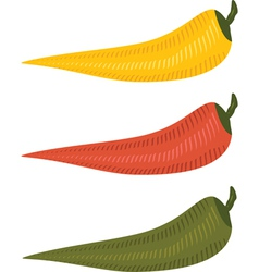 three chili peppers vector image