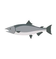Flat fish icon logo isolated on white background vector image vector image