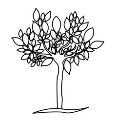Figure tree with many leaves icon vector