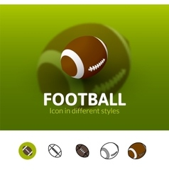 Football icon in different style vector image