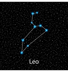 Leo Zodiac sign bright stars vector