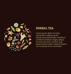 herbal tea ticket vector image