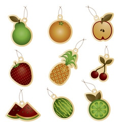 fruit tags vector image