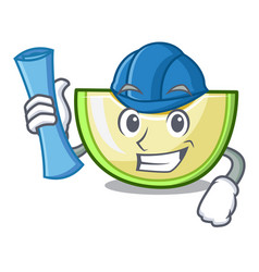architect fresh melon slice in the frezeer cartoon vector image