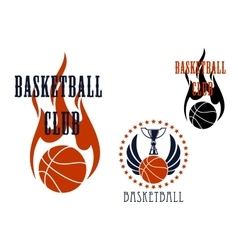 Basketball icons with winged balls and flames vector image vector image