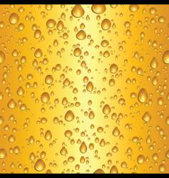Beer water drops vector