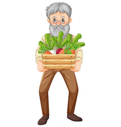 Old farmer man holding wooden crate vegetable vector