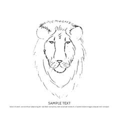 SKETCH Lion Head vector image