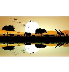 beauty silhouette of safari animal vector image vector image