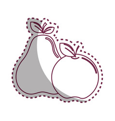 sticker silhouette pear and apple fruit icon stock vector image vector image