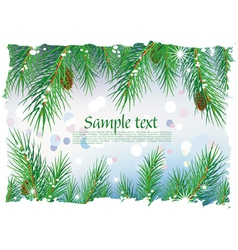 framework from pine branches vector image vector image