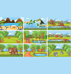 Background scenes animals in wild vector