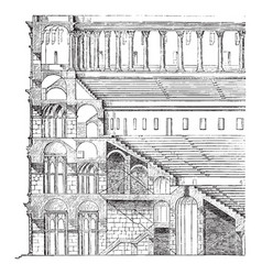 Elevation and section of the colosseum the tiers vector