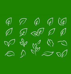 Green eco set hand drawn leaf icons vector