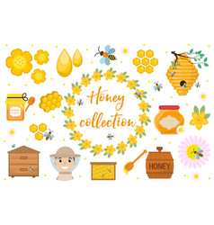 honey collection beekeeping set objects vector image