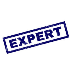 rectangle scratched expert stamp vector image