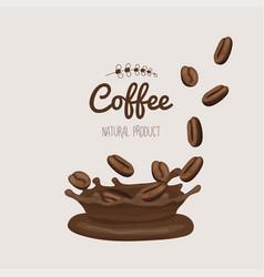 set coffee bins in coffee splash template vector image