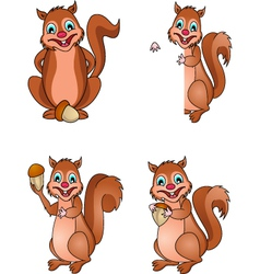 squirrel collection vector image
