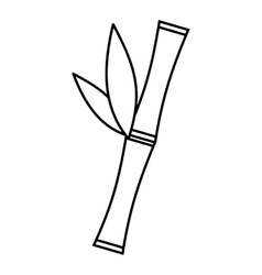 Bamboo icon outline style vector