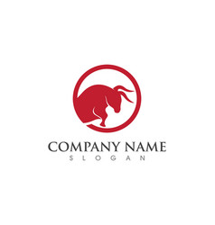 Bull logo template vector