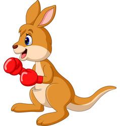 Cartoon kangaroo boxing isolated vector