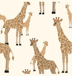 giraffe seamless animal pattern sand background vector image