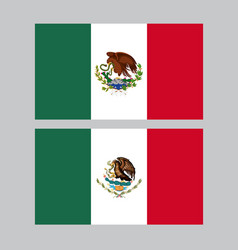 Mexico colorful flags in grey background vector