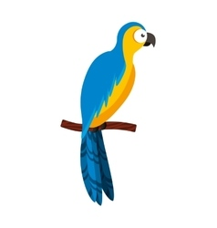 parrot tropical bird icon vector image
