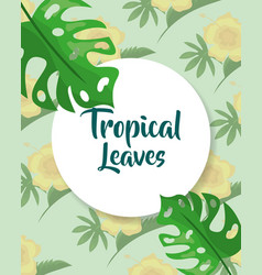tropical leaves label template monstera palm vector image