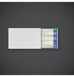 Colorful matches in a box vector image