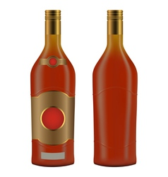 Cuban rum bottle vector image