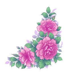 hand drawn floral bunch with pink roses vector image