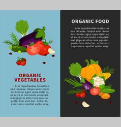 healthy organic vegetables fresh healthy food vector image