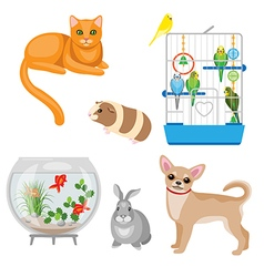 pets set vector image