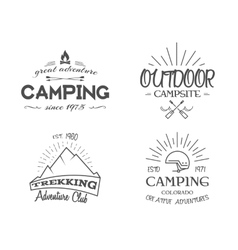 Retro badges and label logo graphics collection vector image