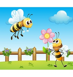 Two bees inside the wooden fence vector image