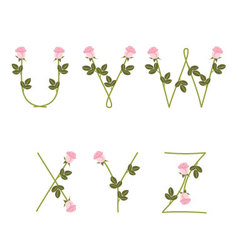 Floral alphabet Pink roses from U to Z vector image