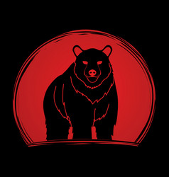 big bear standing vector image