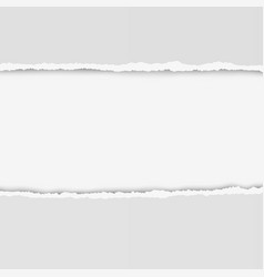two pieces of torn paper with ripped edges vector image