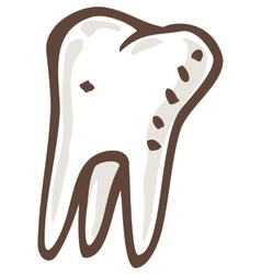 White Tooth with Three Roots vector image